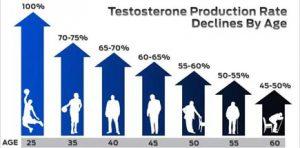 testosterone production